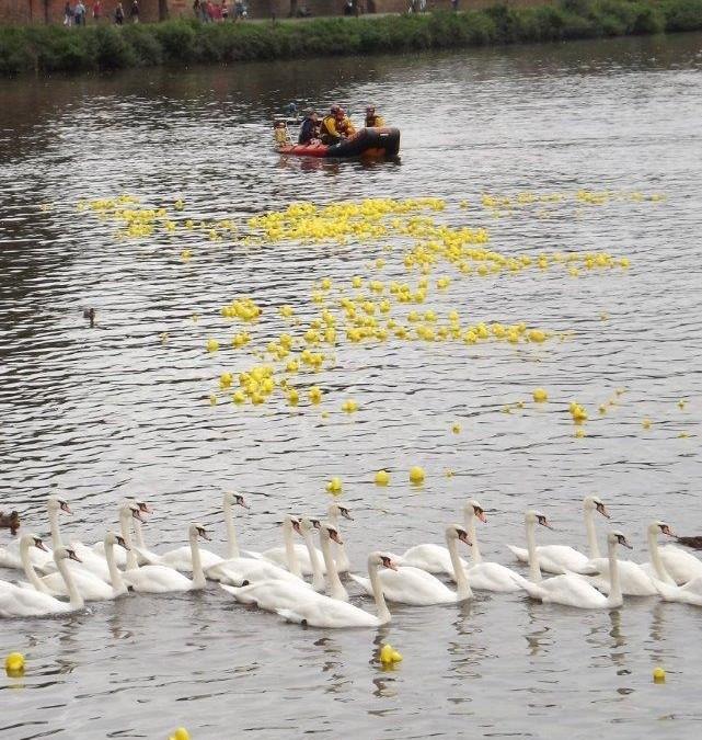 St Richard's Hospice Duck Race